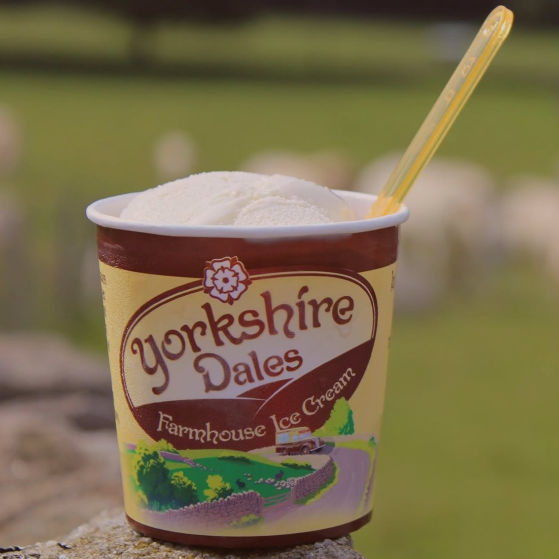 stock yorkshire dales ice cream